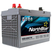 NSB-AGM-31M Battery