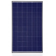 Trina Solar TSM-PA05.08, 255 Watt Solar Panel, 60 Cell Poly, Black