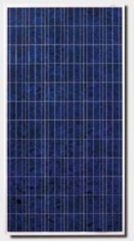 Canadian Solar CS6X-310P, 310 Watt Poly Solar Panel