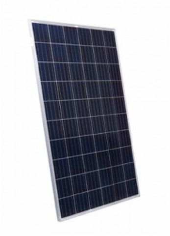 Suntech Power STP255-20/Wd, 255 Watt Solar Panels
